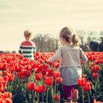 Thuisblijven met kinderen tip: Trek de natuur in!