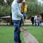 Kangaroo Creek Farm | Kleine Reizigers