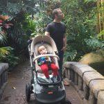 Victoria Butterfly Gardens | Kleine Reizigers
