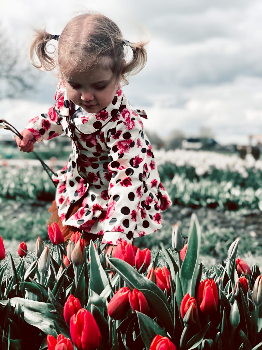 Fotografie tips om de tulpenvelden en jouw kinderen op de foto te krijgen | Kleine Reizigers